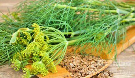 خشکبار و سبزی خشک ناب شوید